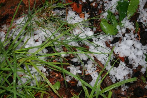 5 Proven Ways To Keep Your Team Motivated After Hail Season